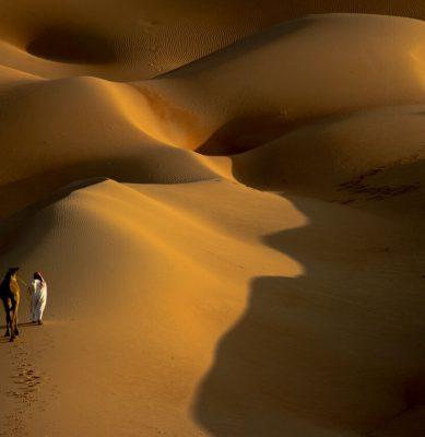 الصحراء 8