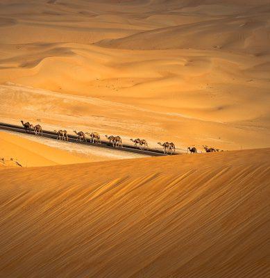 الصحراء 4