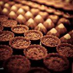 مصنع الشوكولاتة
