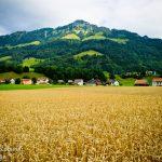في ضواحي سويسرا